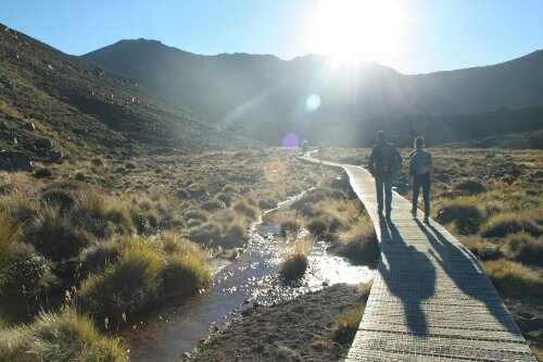 "OnTheRoad: ""pisapraos"" in the Tongariro Alpine Crossing"