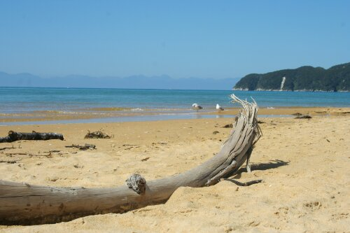 OnTheRoad: walking, kayaking and sailing in the Abel Tasman