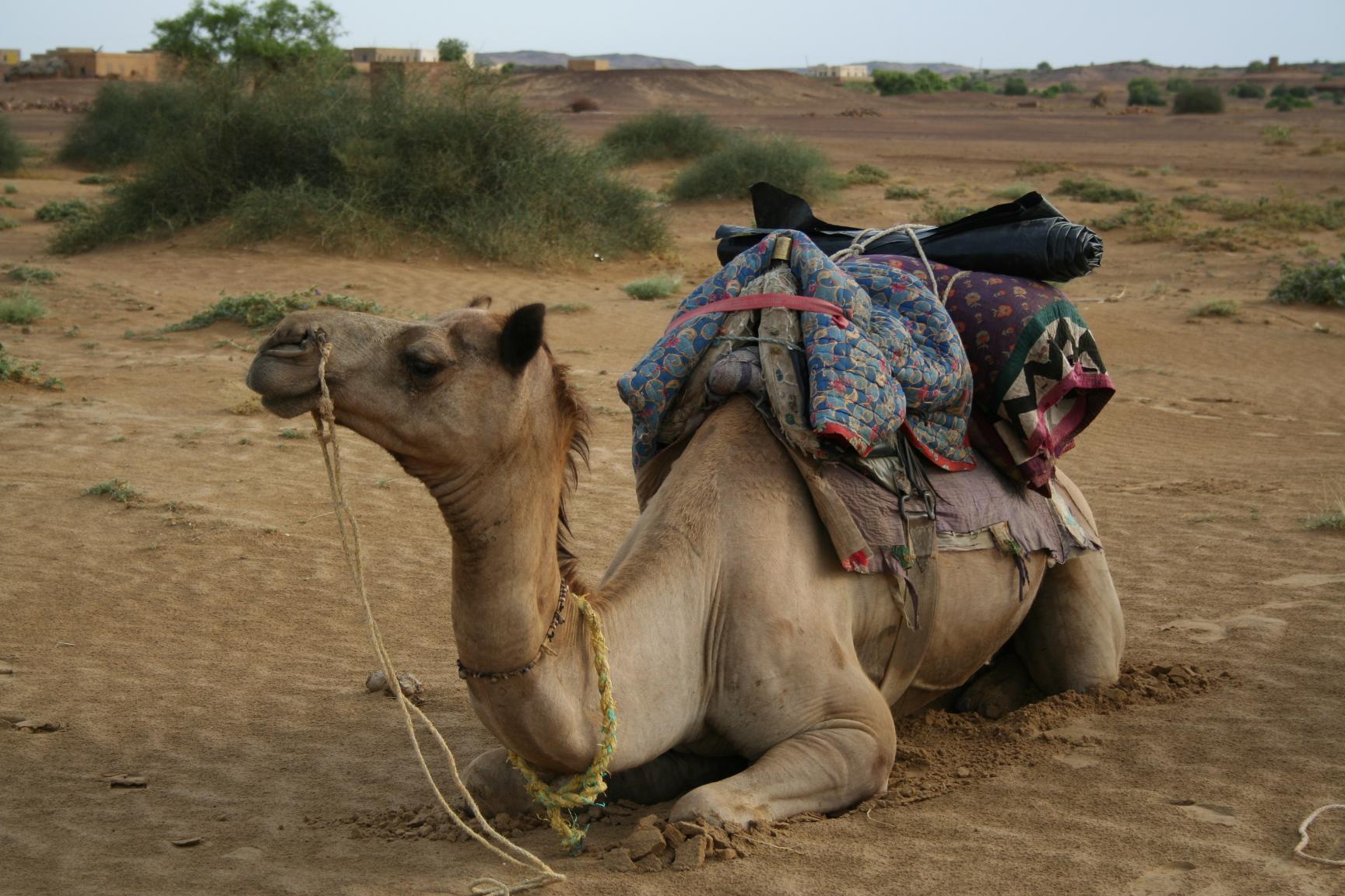 Jaisalmer - getting ready