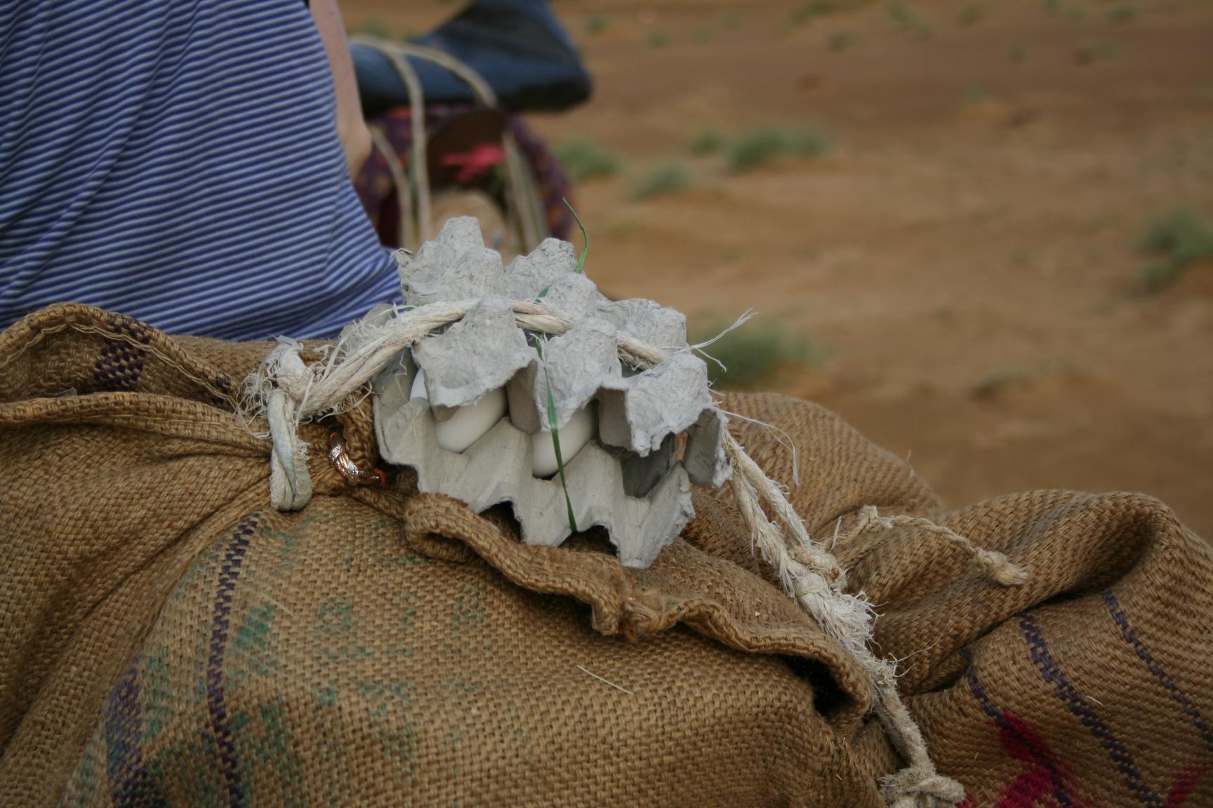 Jaisalmer - how to transport eggs in the desert