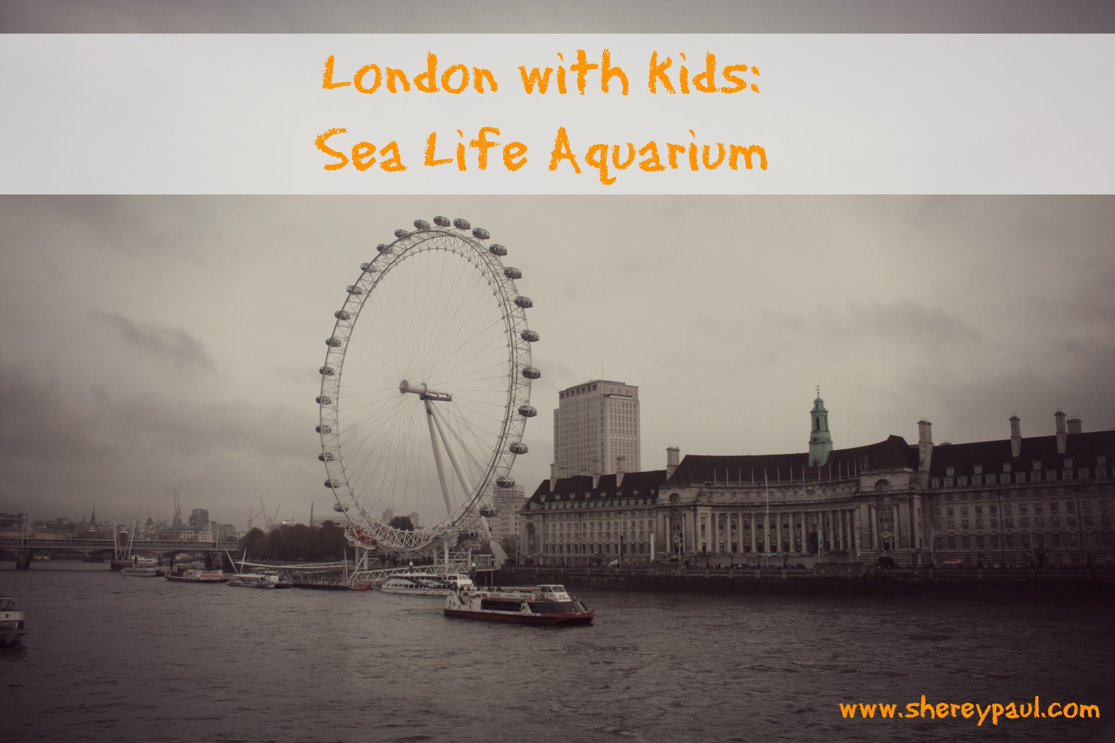 London with kids: Sea life Aquarium