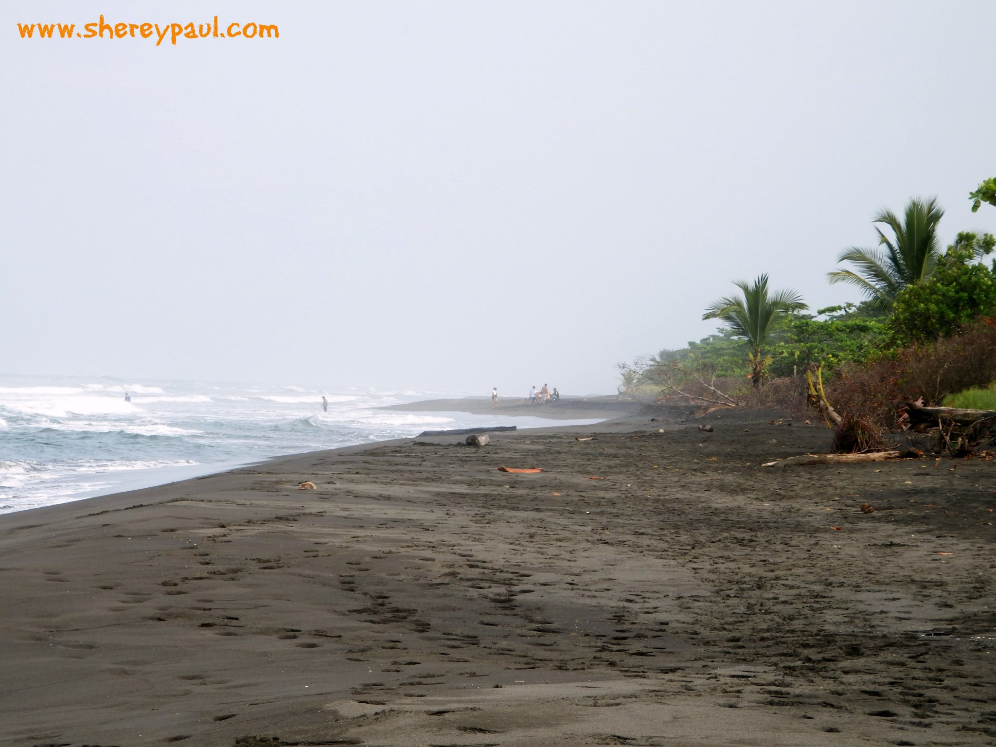 Beach of Parismina - The best place to see sea turtles in costa Rica without spending a fortune