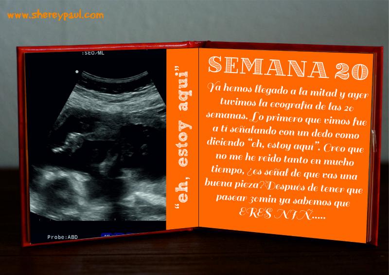 diario de embarazao -semana 20