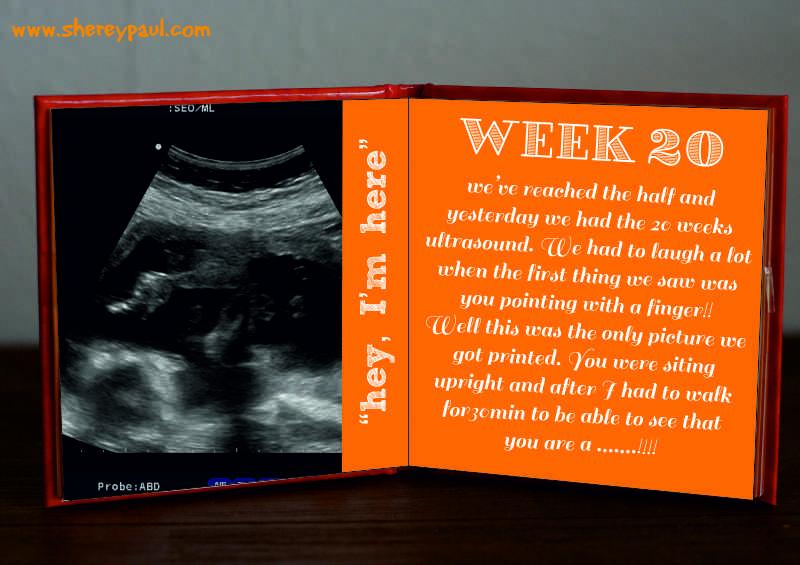 pregnancy diary-week 20