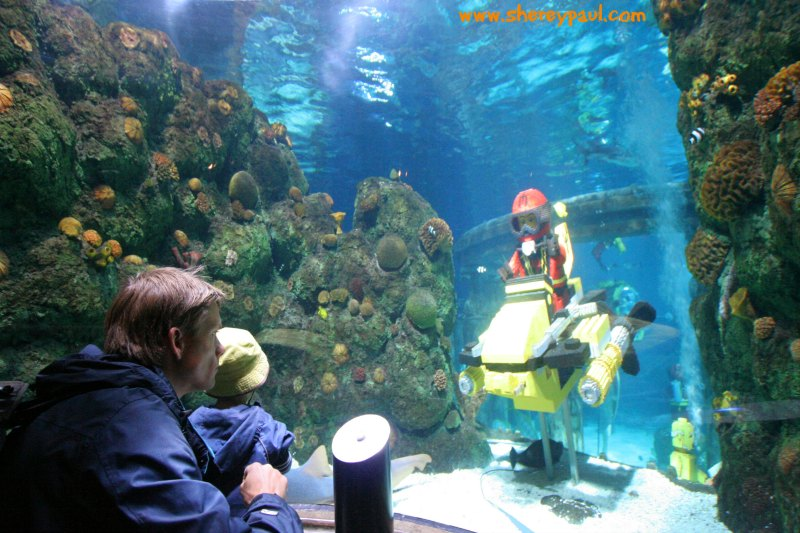 Legoland with a toddler: Atlantis