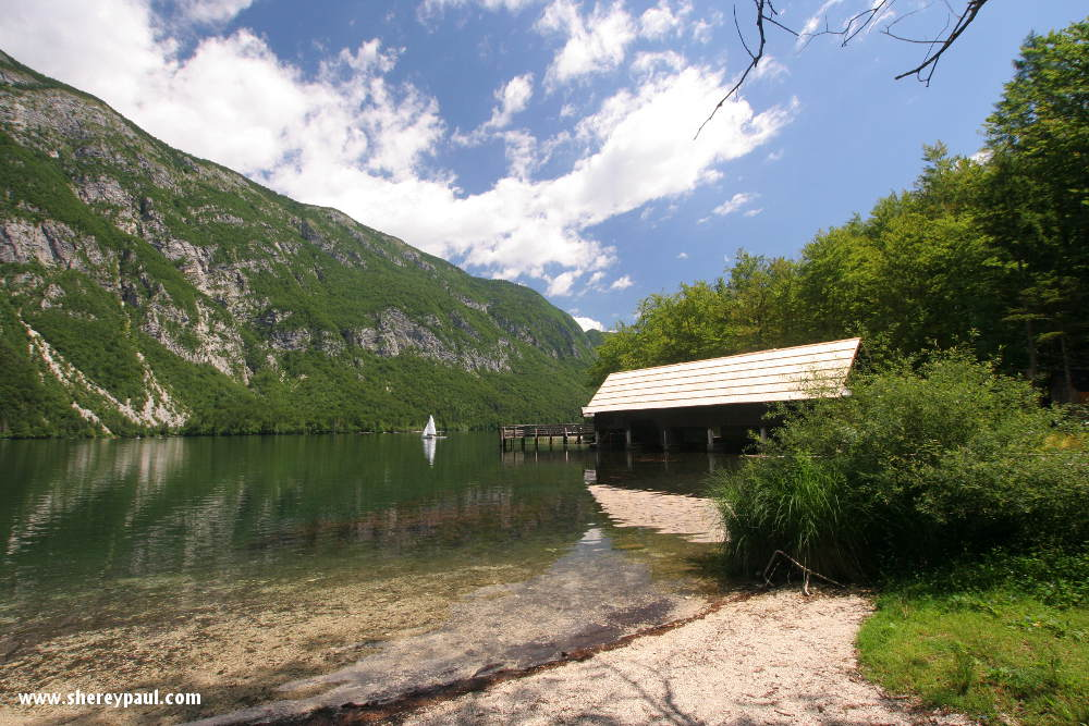 The view from our caravan at Camp Bohinj