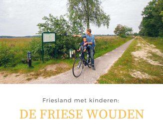 Friesland met kinderen: De Friese Wouden