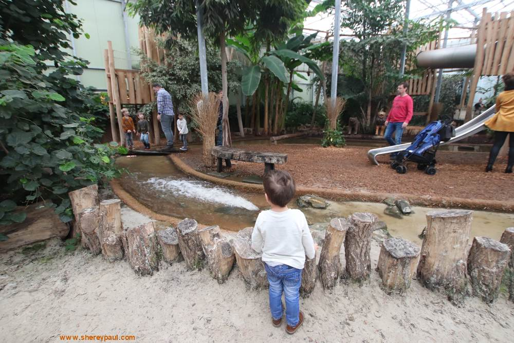 Orchideeën Hoeve met kinderen: Het Mangrovebos Speelparadijs