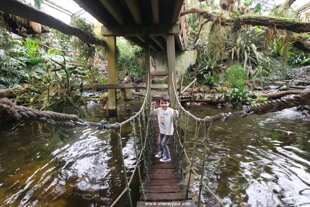Orchideeën Hoeve met kinderen: houd je je voeten droog bij  deze touwbrug oversteken?