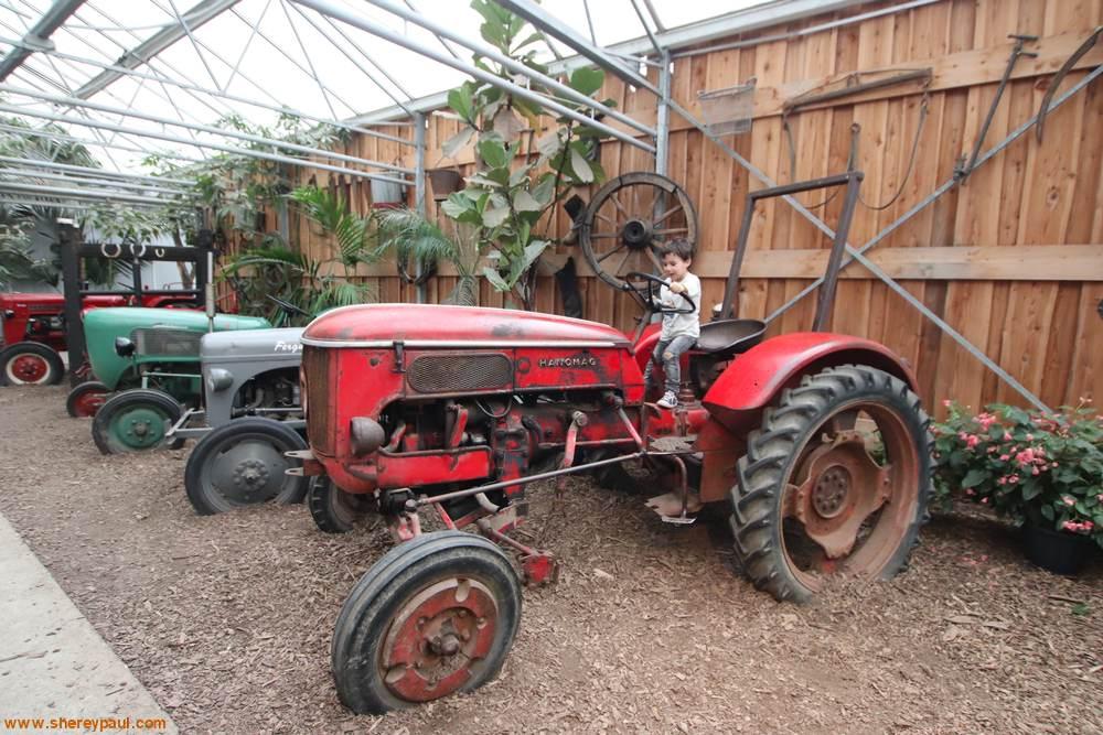 Orchideeën Hoeve met kinderen: tractor rijden