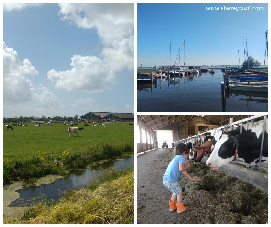 boerencamping aan het water in Friesland - Lân en Mar