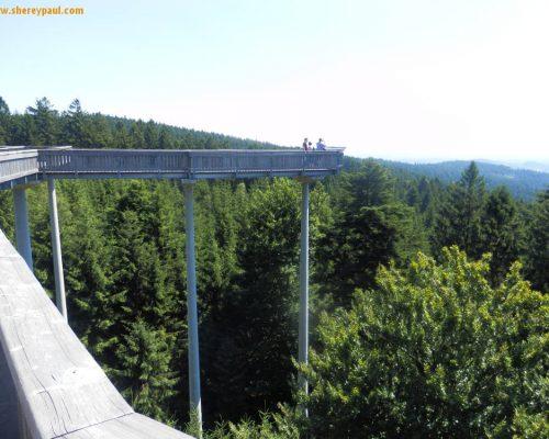 July summary: Slovenia, YogaCamp and next year holidays