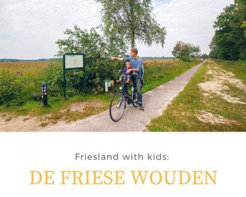 Friesland with kids: De Friese Wouden