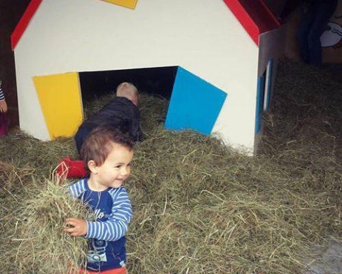 Agenda week 22 - wat te doen met kinderen in Friesland