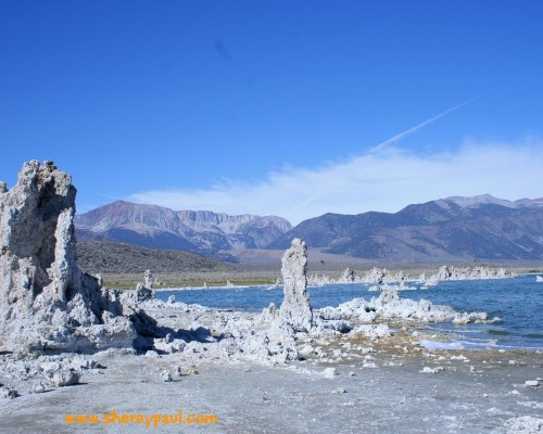 Postcard from Mono Lake, California - ww