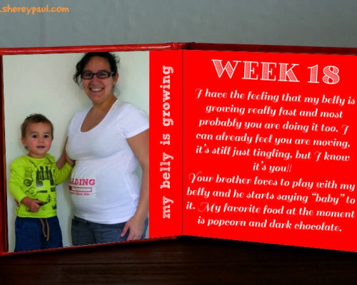 Pregnancy diary: week 18